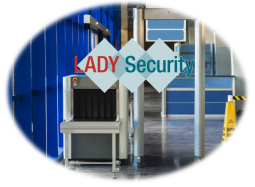website-lady-seucrity-security-check